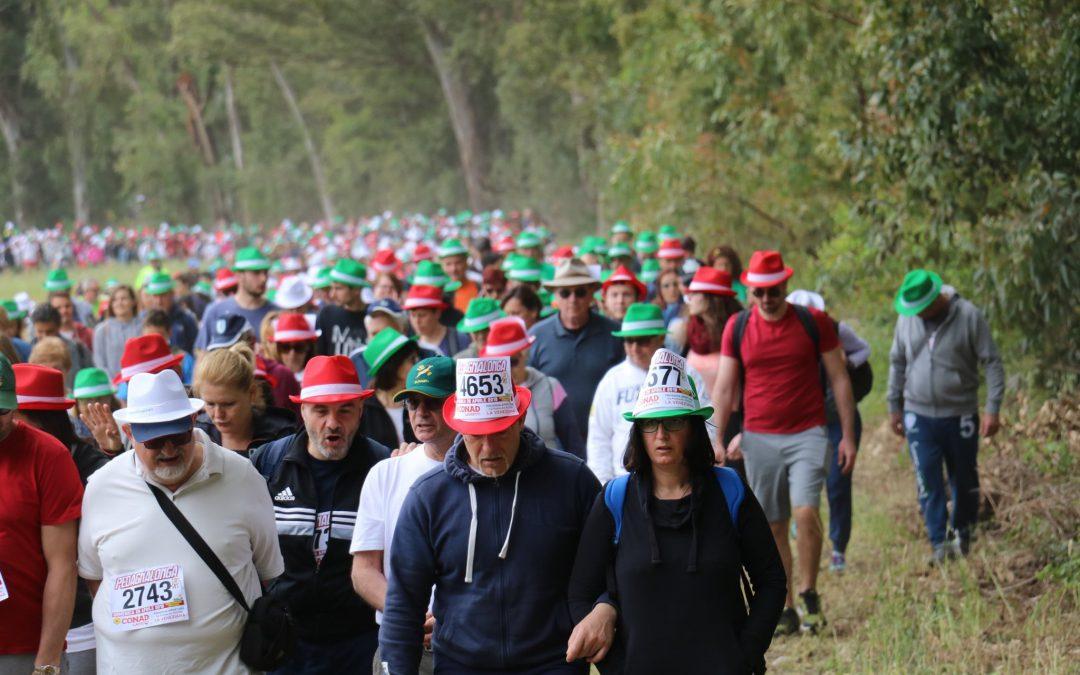 #Pedagnalonga47 La Pedagnalonga stringe la mano allaRoma Appia Run: ecco la nuova data e le altre novità di un evento da 6.000 partecipanti